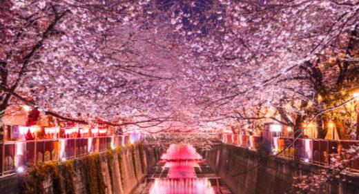 パパ活は東京都目黒区でできる!東京都目黒区のパパ活の実態を調査!さらにおすすめのパパ活サイトもご紹介しちゃいます!