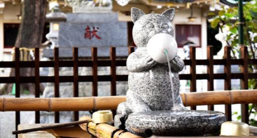 パパ活は東京都杉並区でもブーム!東京都杉並区のパパ活実態を調査!おすすめのパパ活サイトを紹介!